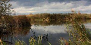 jezioro modła