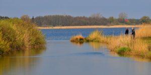 jezioro wiko