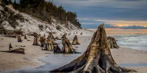 plaża czołpino 1 kamienny las