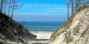 plaża zach