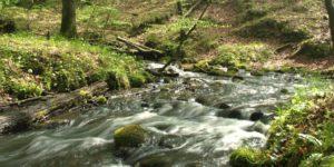 b5aca97810a97795d0de5375cfa90a61Krajobraz urzeka swoim pięknem - potok Huczek